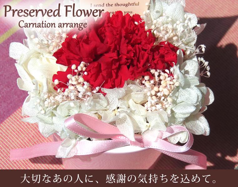 Preserved Flower Gift 母の日プリザーブドフラワー カーネーションアレンジ 花器(ピンク)