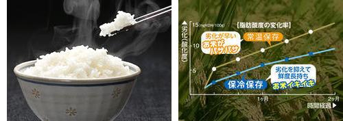 美味しいご飯は、玄米を冷やして保存、食べる分だけその都度カンタン精米