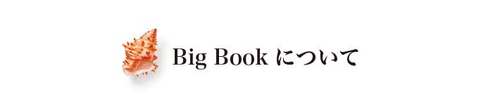 BigBookについて