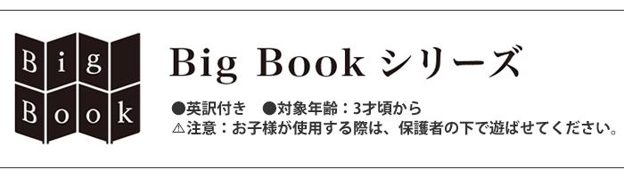 BigBookシリーズ