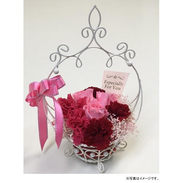ジェイフラッグ Preserved Flower Gift 母の日プリザーブドフラワー バラ&カーネーションアレンジ(PF-CARNATION-03)