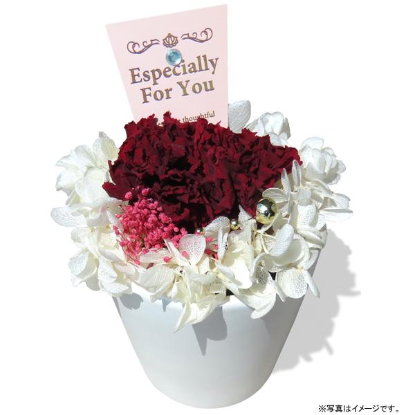 ジェイフラッグ Preserved Flower Gift 母の日プリザーブドフラワー カーネーションアレンジ 花器(白)(PF-CARNATION-04)
