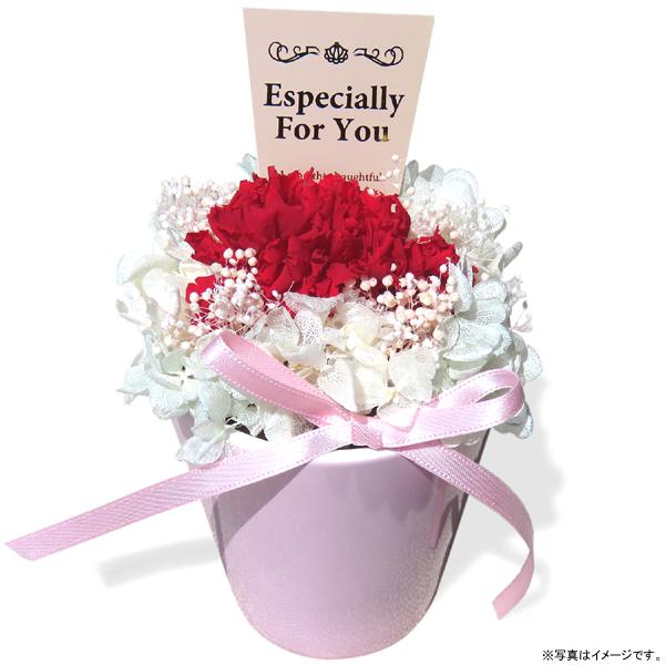 ジェイフラッグ Preserved Flower Gift 母の日プリザーブドフラワー カーネーションアレンジ 花器(ピンク)(PF-CARNATION-05)
